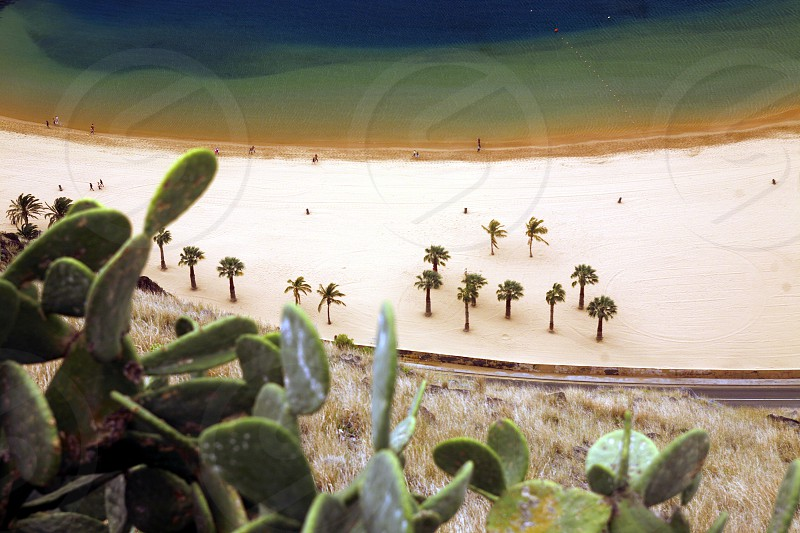 The Playa de las Teresitas at the village of San Andrea on the Island of Tenerife on the Islands of Canary Islands of Spain in the Atlantic.   photo