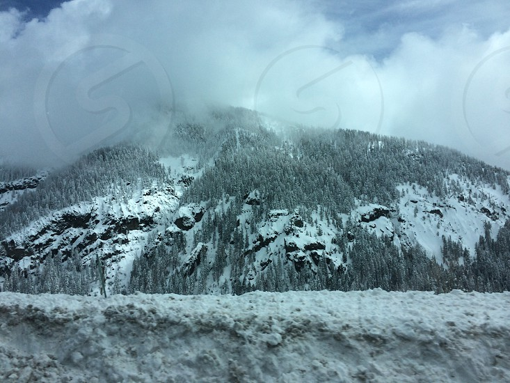 mountain covered in snow and trees under white and blue clouds photo
