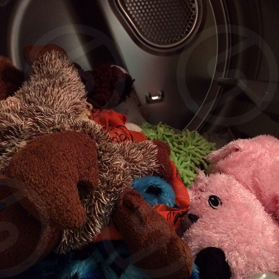 Stuffed animals in dryer; puppy toys; pink puppy; dog toys  photo
