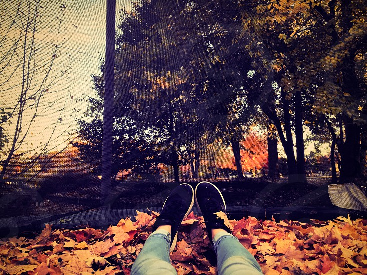 Shoes feet fall leaves autumn trees orange  photo