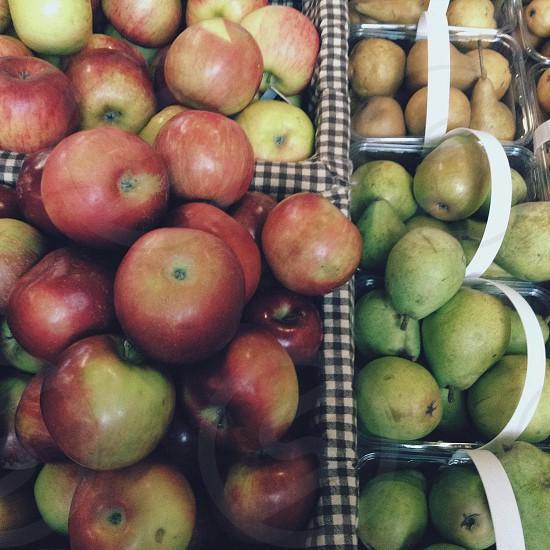 Organized food? ~ Halifax Farmers Market photo