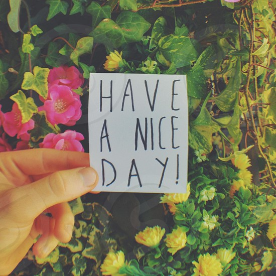 have a nice day! card  photo