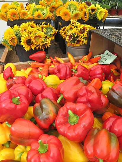 Red and yellow peppers sunflowers farmers market photo