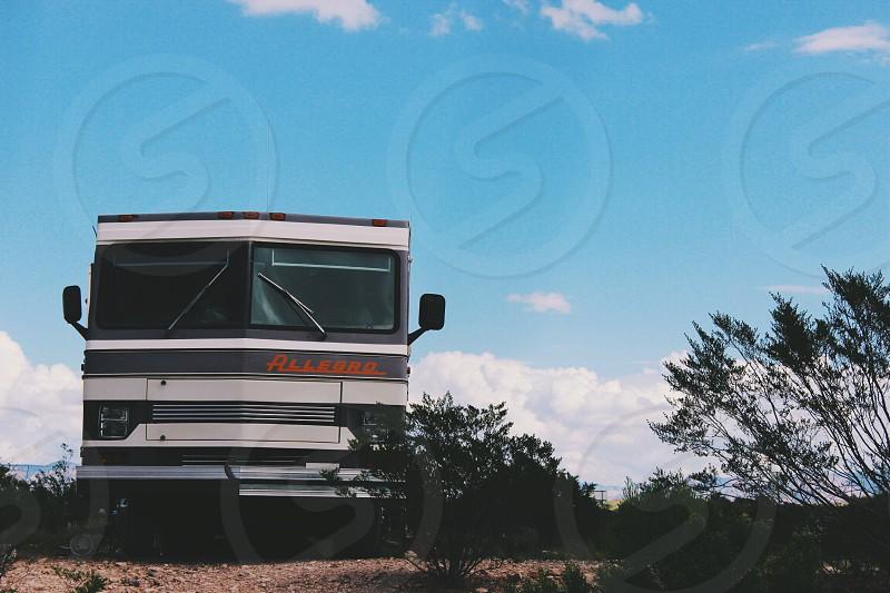white and black bus photo