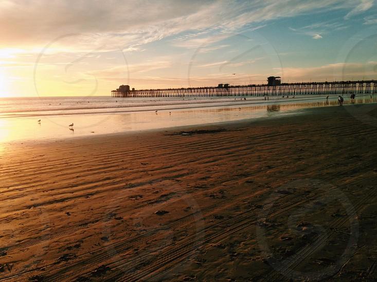 seashore with dock photograph  photo