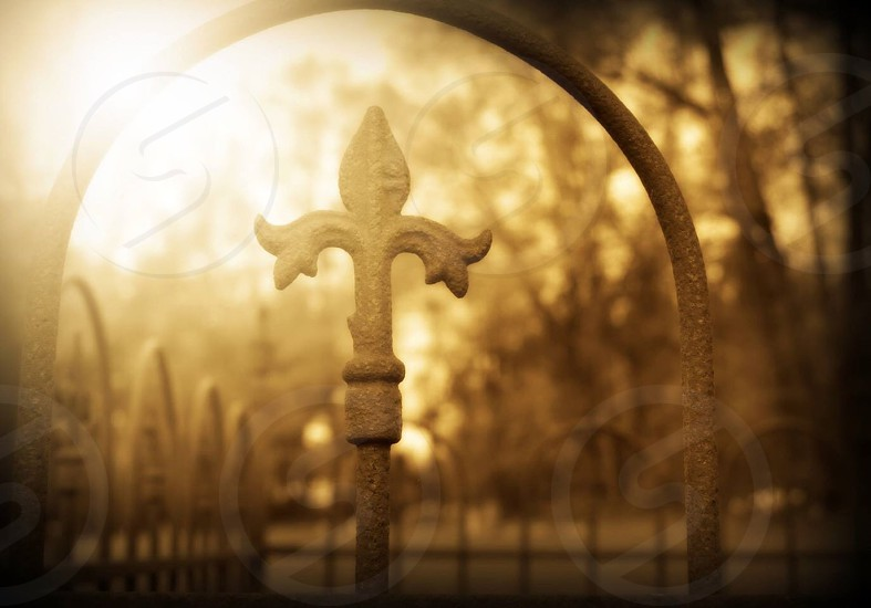Cemetery gate  photo