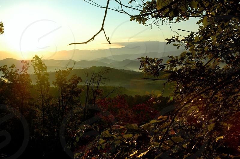 Through the trees - into the mountains.  Gatlinburg Tennessee photo