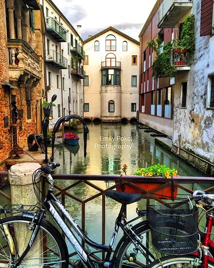 travel Treviso Italy  wanderlust bike scenic traveling  Best of Italy photo