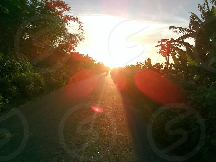 Sunshine on the road. photo