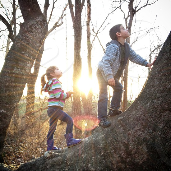 boy and girl climbing on the tree photo