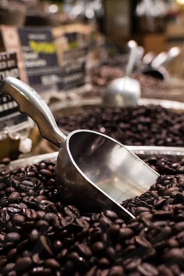 Close up of scoop in bulk bin of coffee photo