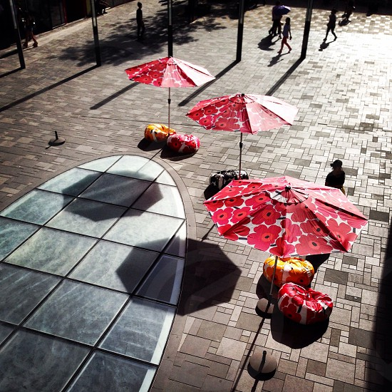 Summer shadows in Beijing  photo