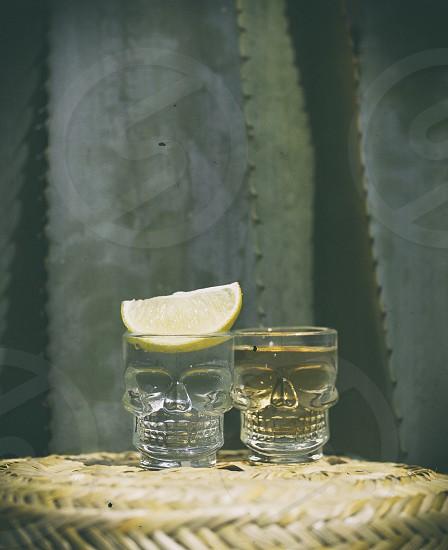 clear skull designed shot glass photo