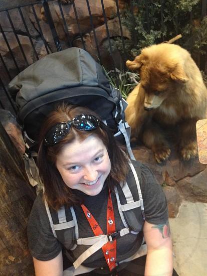 Curious bear photo
