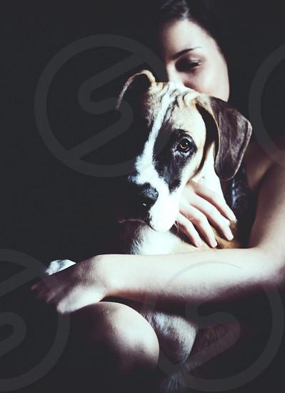 woman hugging a large sized dog photo