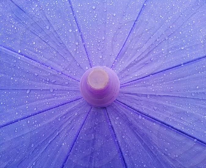 water drops on the umbrella photo