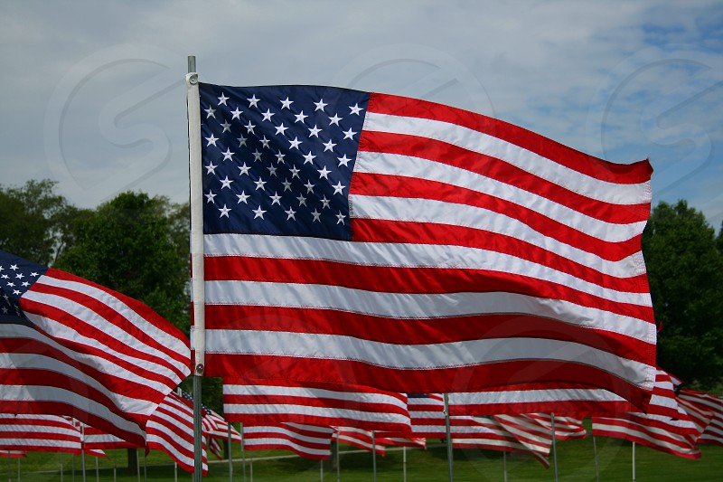United States Flag photo
