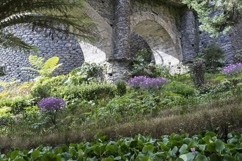 flower garden in Monte Madeira with old bridge photo