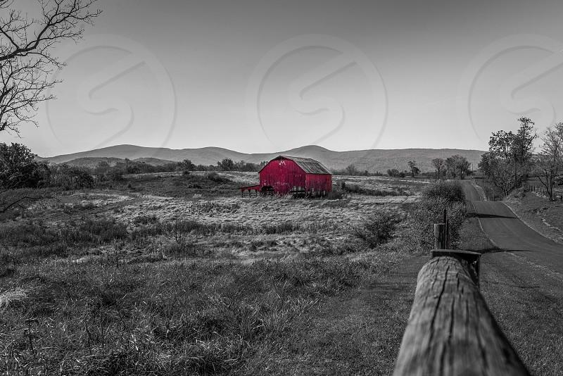 Wizard of oz meets the east. Marriott ranch in linden Virginia. photo