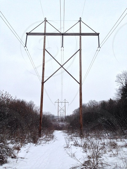 brown and gray utility poles photo