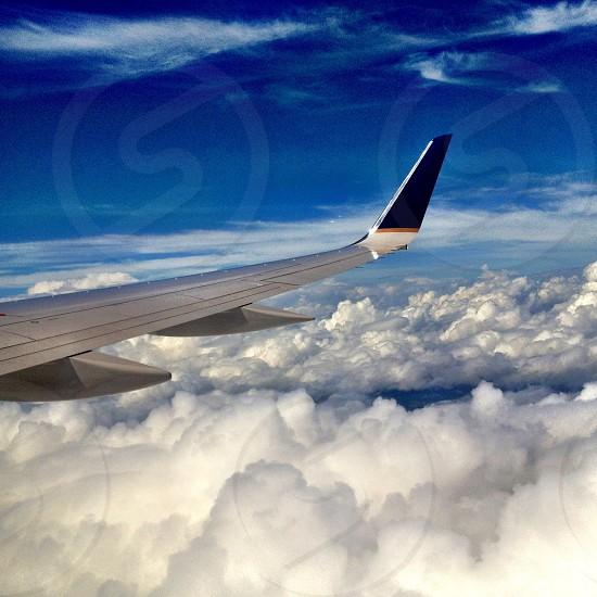 wingspan on airplane photo