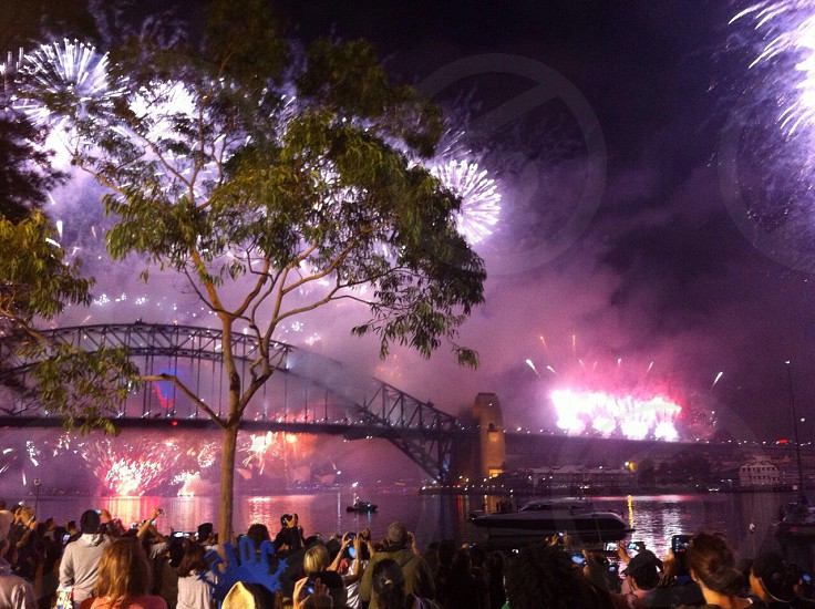 New Years by the Sydney Bridge photo