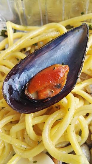 Spaghetti with mussels. Eatery La Cubana. Marina di Ravenna. Italy photo