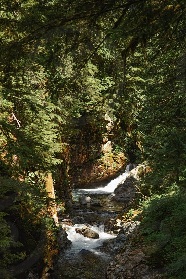 A collection of beautiful landscapes in the pacific north west photo