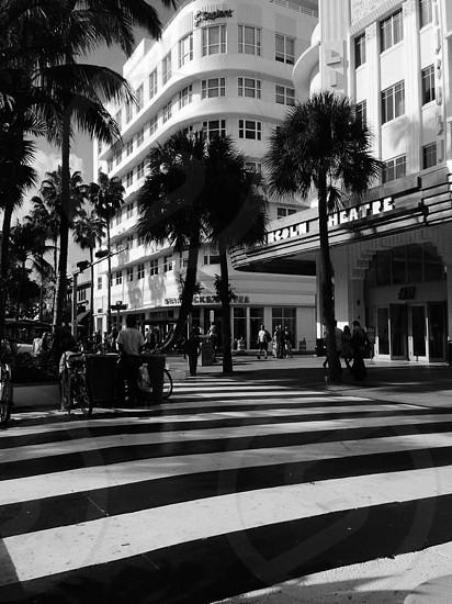 Black and white walkway photo