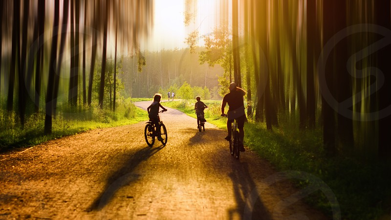 group of person riding bicycle during golden hour photo