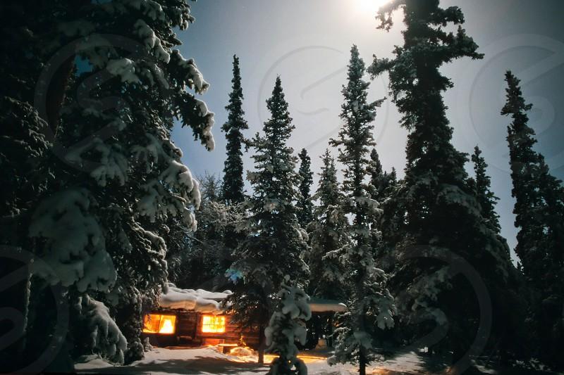 Yukon trapline log-cabin fully illuminated at full-moon night in snowy winter photo