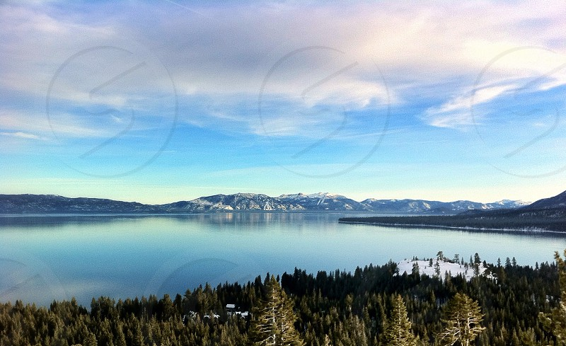 lake forest photo photo