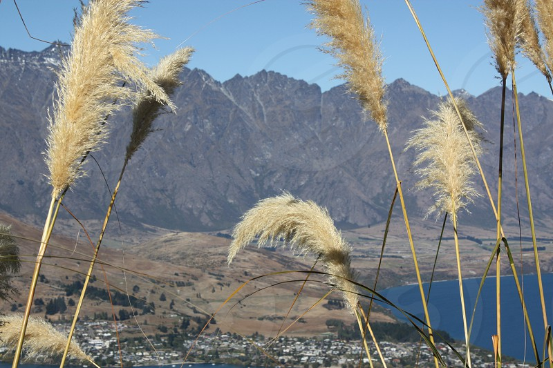 The Remarkables Queenstown New Zealand photo