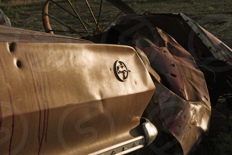 Impaled Impala photo