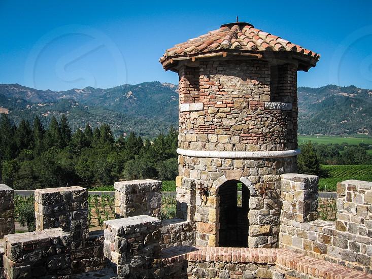 Castle vineyard  photo