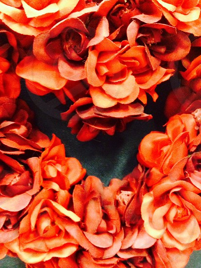 Heart of flowers photo