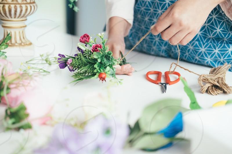 DIY flower blooming. photo