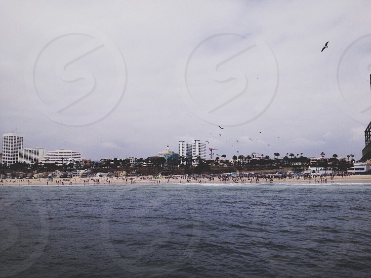 view of beach shore photo