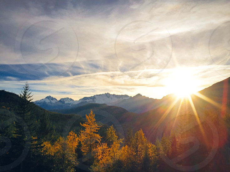 green and  brown leafed trees near mountain during sunrise photo
