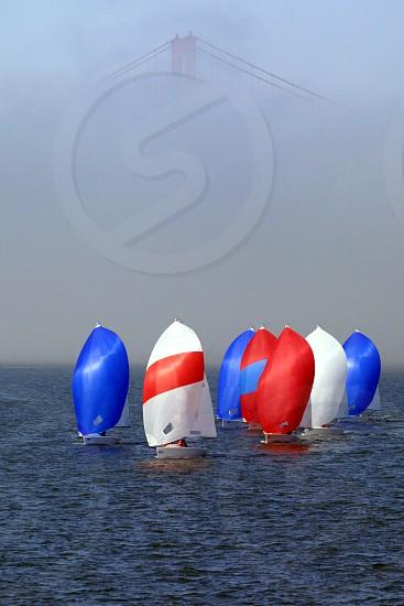 Junior Sails photo