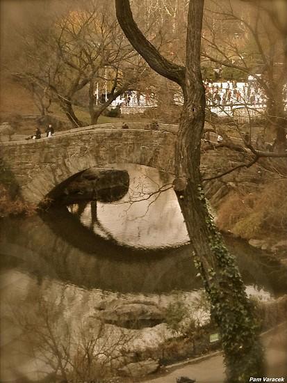 Bridge in Central Park photo