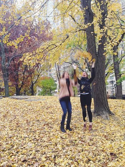 Autumn leaf pile jump photo