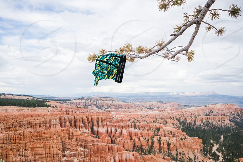 blue green boxer shorts hanging on tree branch with green leaves above rocky canyon at daytime photo