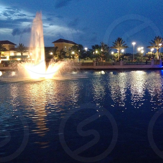 night view of water fountain photo