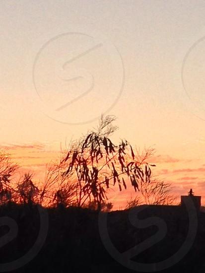 AZ evening photo