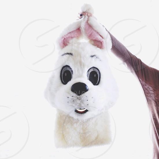 person holding white dog plush photo