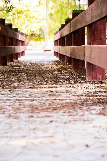 Across the bridge the happiness exist :) photo