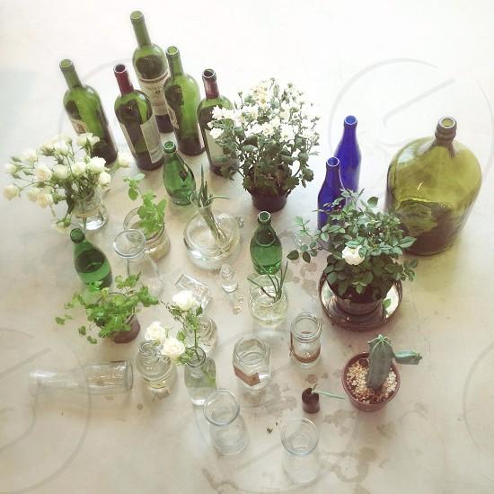Glass & Greens photo