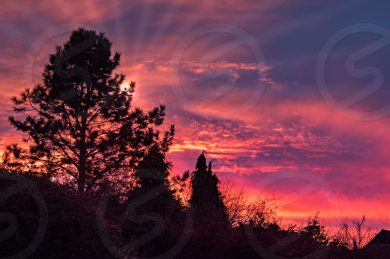 Colourful Sunset over East Grinstead photo