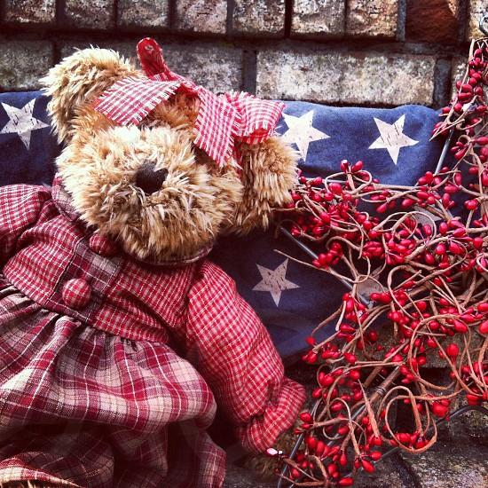 patriotic bear photo